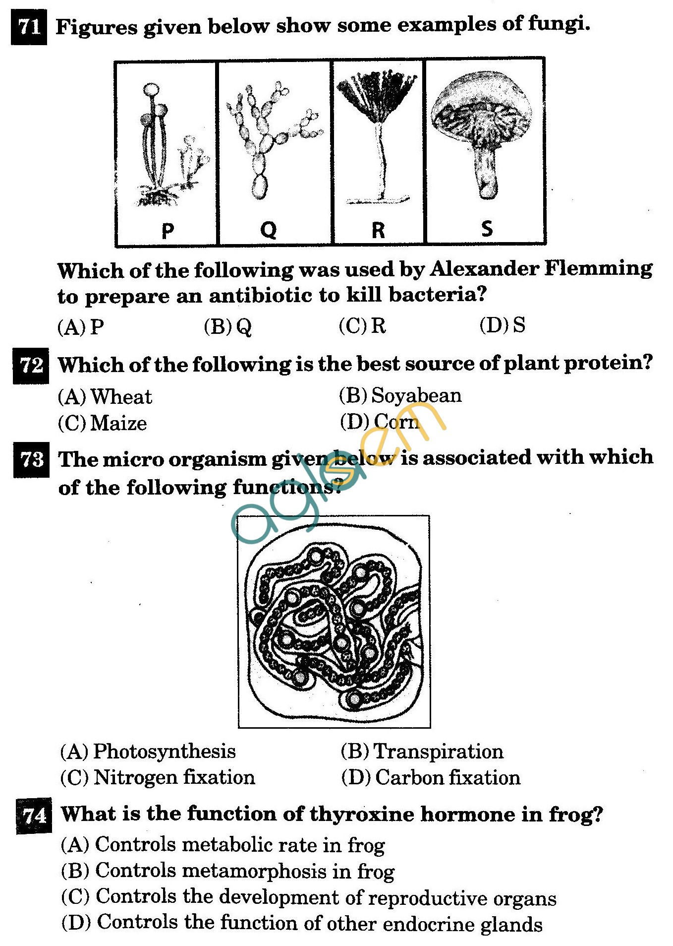 NSTSE 2011 Class VIII Question Paper with Answers - Biology