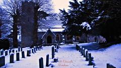Taverham/Norwich January 2013
