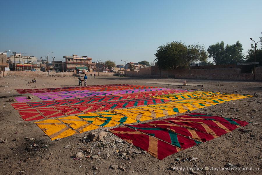 Big laundry, Jodhpur, India