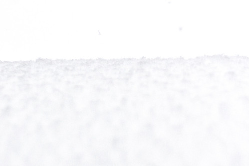 snow--12