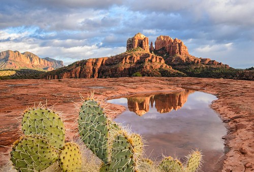 winter sunset arizona cactus reflection rock clouds michael butte cathedral sedona az wilson arizonapassages michaelwilsoncom