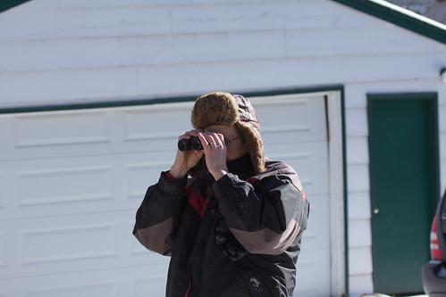 Russ looking at Boreal Owl
