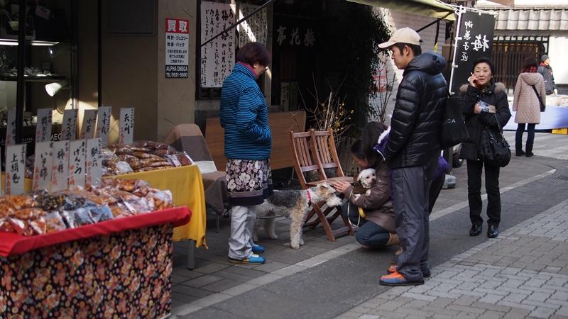Tokyo Honeymoon 2013_day02_103
