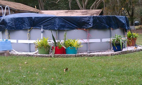 Landscaping Around Base Of Intex Ultra Frame Pools Page 3