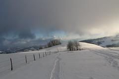 Saleve winter 2013