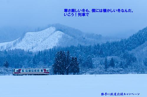D7K_6556-13