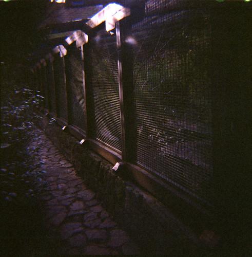 Budapest Zoo (7)