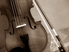 bowed string instrument, string instrument, violin, viola, double bass, cello, string instrument,
