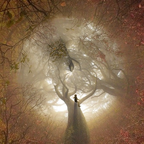 Come forth into the light of things, let nature be your teacher.William Wordsworth