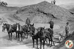 vehicle, coachman, history,