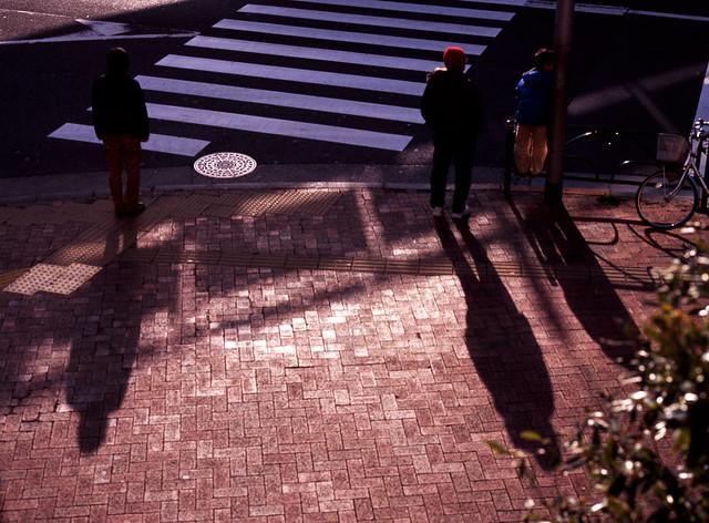 信号待ちの影