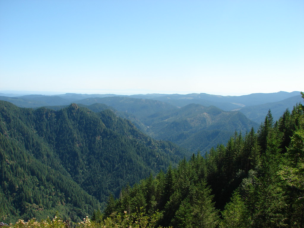 View from the Kings Mountain Trail