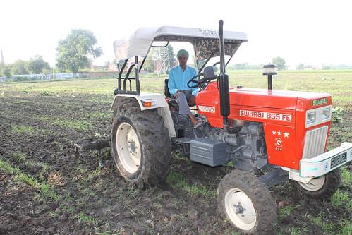 ciągnik rolniczy Rolnik |Fergie Ciągnik na pniu Waiuku|8551180662 b4f5104493