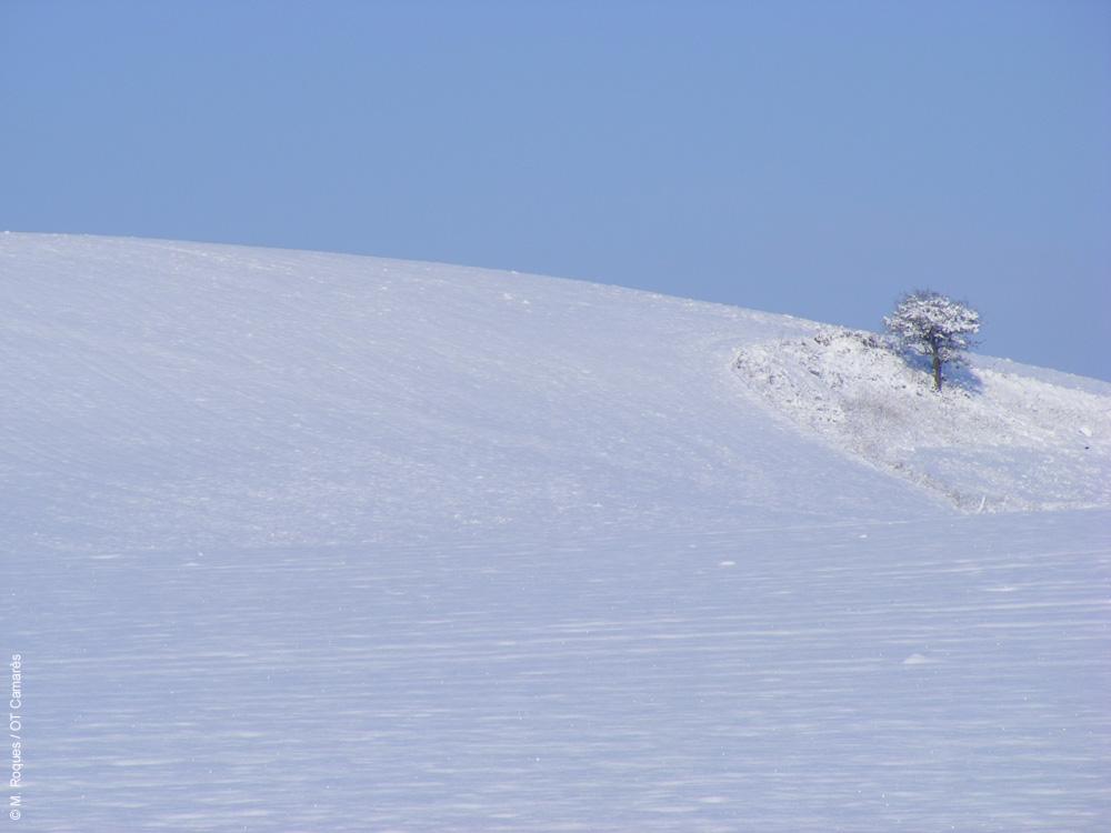 Rougier de Camarès sous la neige