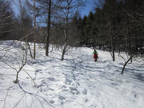 入笠山頂に向けて登る 2013年3月12日11:18 by Poran111
