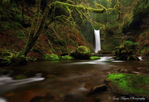 oregon waterfalls multnomahcounty wiesendangerfalls camon7d garymeyersphotography
