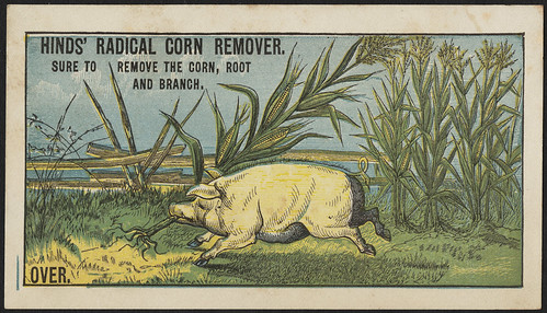 Hinds' Radical Corn remover. Sure to remedy the corn, root and branch. (front)