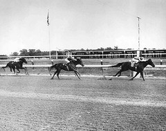 Jameela wins the 1982 Delcap