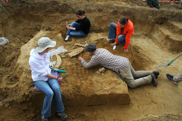 Feldebrő paleolitikum
