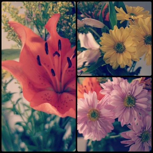 trader joe flowers