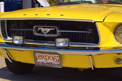 automobile, automotive exterior, yellow, wheel, vehicle, performance car, automotive design, full-size car, first generation ford mustang, bumper, classic car, land vehicle, luxury vehicle, muscle car, motor vehicle,