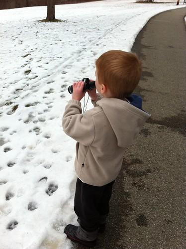Camera Roll-403
