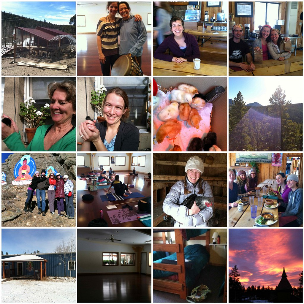the first half of my teacher training at Shoshoni Yoga Retreat in Nederland, CO