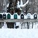 Mail Box            (EXPLORER) by ZUCCONY