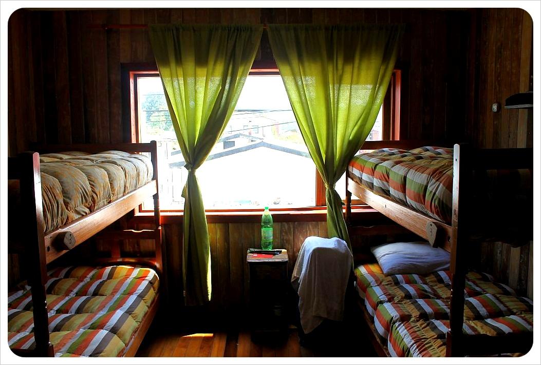 bosque nativo valdivia dorm room