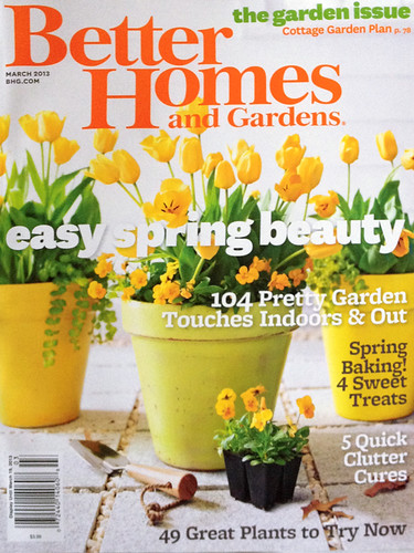 Steph devino surface designer illustrator living in Better homes and gardens current issue