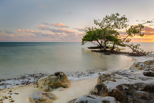 longexposure blue trees sunset sea sky texture beach water clouds america sand rocks unitedstates florida tourist islamorada floridakeys annesbeach