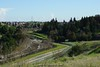 View of the Contra Costa Cannel and Delta de Anza Regional Trail. That green will be gone in a few months, after the rain session is over.