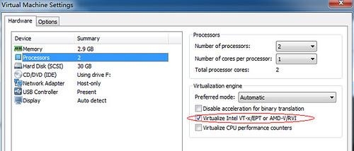 Virtualize选项