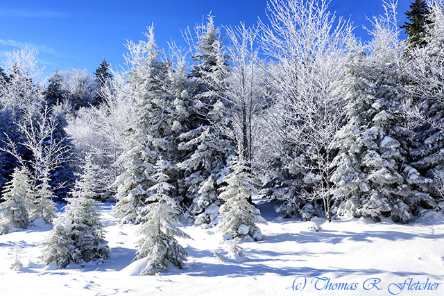 Winter along the Highland Scenic Highway