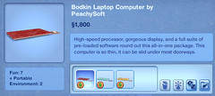 Bodkin Laptop Computer by PeachySoft