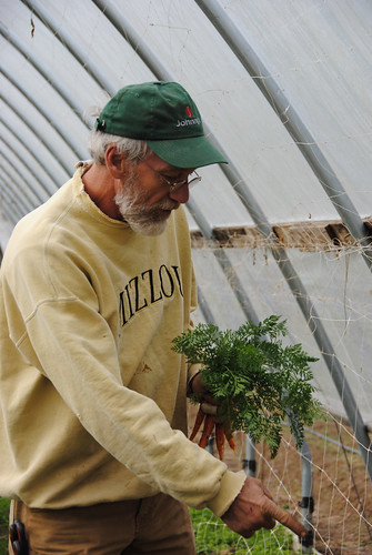 Todd Lister examines carrots that he grew in his high tunnel.