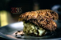 201365 • Sustenance 077