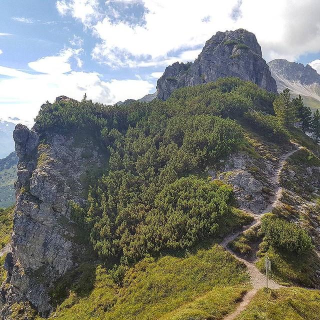 Photo:Lass uns Gipfel erklimmen #tirol #tyrolia #stubaital #mountains #alps #alpen #berge #treehugger #austria #nature #motherearth #earthlover #everydayisearthday #treeporn #treelovers #treesofinstagram #treecollection #natureisbeautiful #nothingisordinary #ou By Stefan_Moser