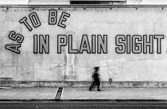 As To Be In Plain Sight