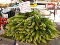 Silver King corn