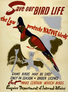 Save Our Bird Life (1959)