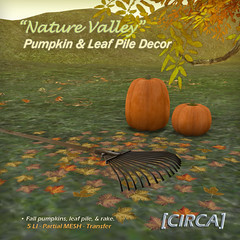 "@ SOS Event - [CIRCA] - ""Nature Valley"" - Pumpkin & Leaf Pile Decor"