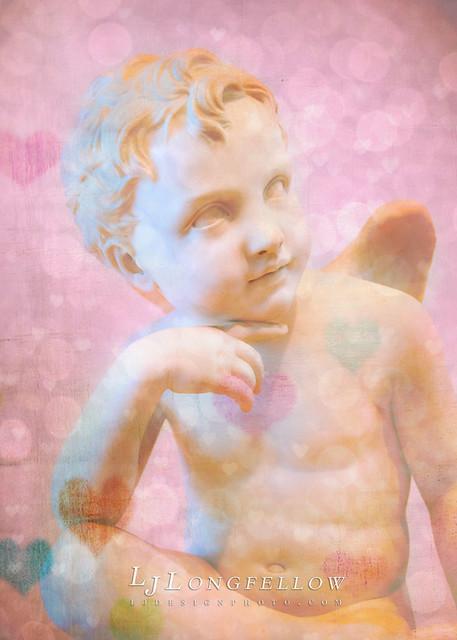 Cupid 14/365