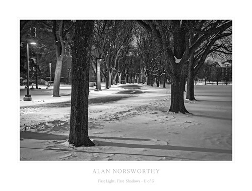 First Light, First Shadows by Alan Norsworthy