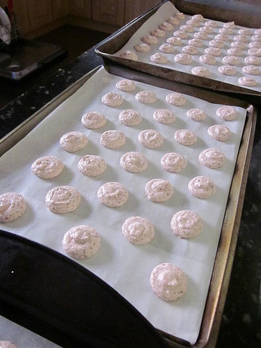 macarons piped