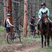 Bikers yielding to an equestrian on OSMP