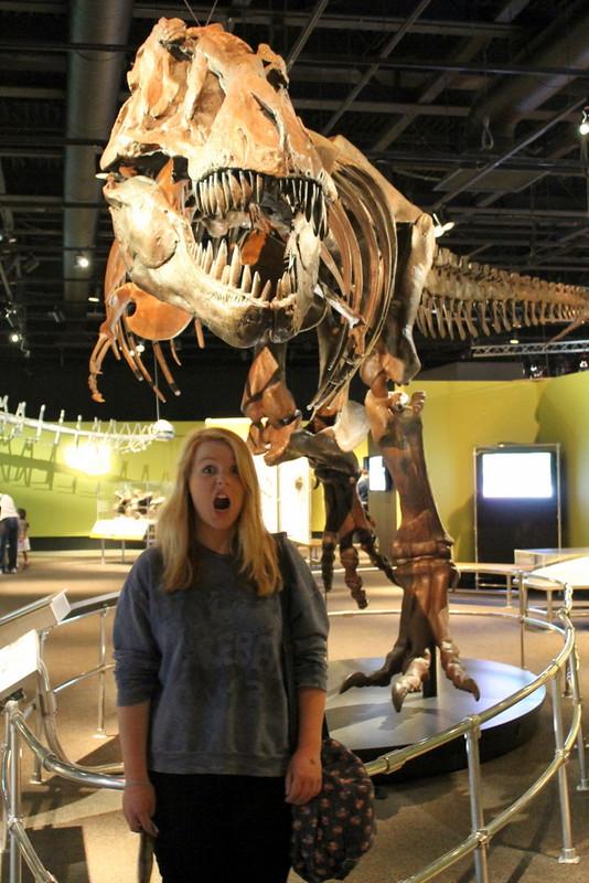 Victoria museum - dinosaur skeleton