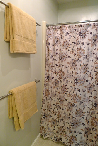 Shower Curtain and Towels