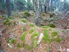 Bergeries de Pasciale d'Iricia : ruines de murs d'habitations