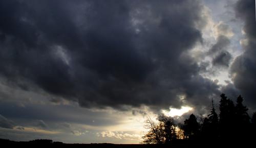 trees winter sunset storm hail clouds forest day sonnenuntergang wolken wald bäume hagel niederbayern sturm lowerbavaria